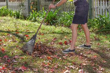 Raking the Autumn leaves up from the grass