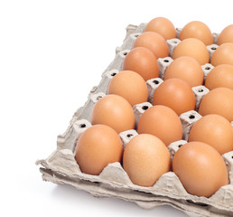 eggs pack panel ingredient prepare for food in restaurant isolate on white