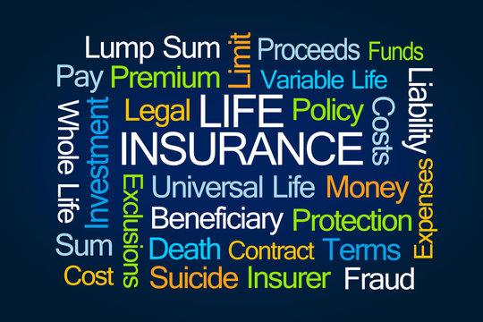 Life Insurance Word Cloud