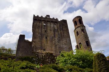 ruins of Blarney Castle in Ireland in summer