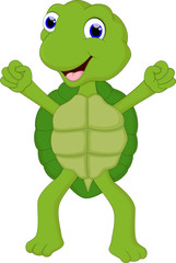 funny cartoon turtle for you design