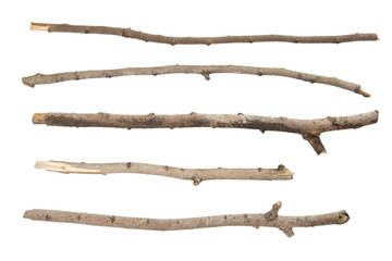 twig Fototapete