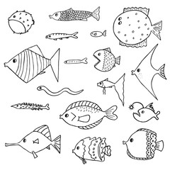 Set of exotic fish. Vector illustration. Isolated
