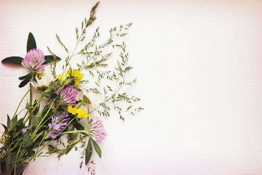 Wild flowers bouquet on white carton