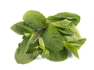 Fresh mint leaves on white background