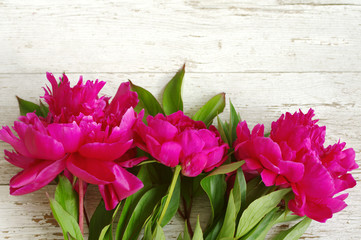 Pink peony flowers. Bouquet of pink peonies close up on the old painted wooden background