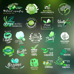 Nature and cosmetics labels and stickers collection
