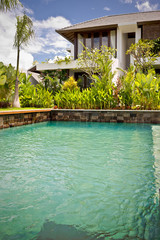 Luxury swimming pool closeup with natural garden