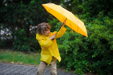 Chappie in a bright yellow raincoat tries to hold an umbrella from wind flaws.