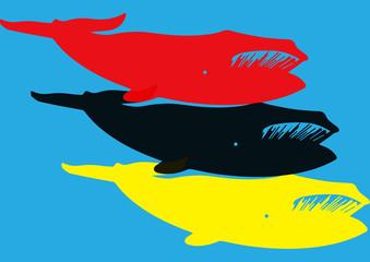 Baleines pop art