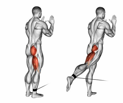 Foot moves back to the lower block. Exercising for bodybuilding Target muscles are marked in red. 3D illustration