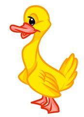 Yellow duckling cartoon illustration isolated image animal character