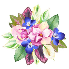 Illustrations with realistic watercolor flowers. Botanical illustration.