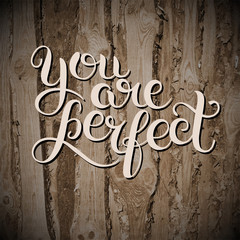 you are perfect hand lettering inscription inspirational and mot