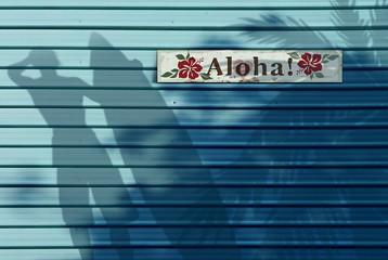 Aloha Hawaiian Wall with Shadow Background