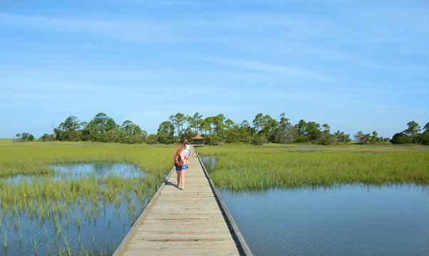 Girls with backpack hiking on vacation. Friends walking on the boardwalk on the marshes, forest  in the background, South Carolina coast, Low country, USA.