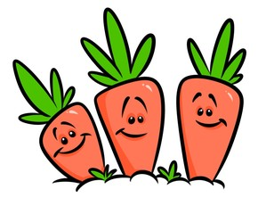 Carrots garden vegetables cartoon illustration isolated image