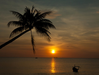 Sandy beach with palm trees at sunset time, Phu Quoc Vietnam