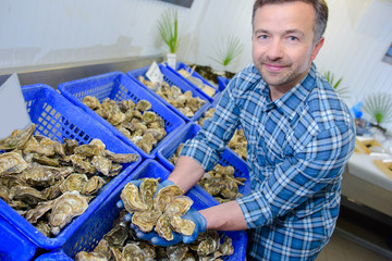 Man holding handful of oysters