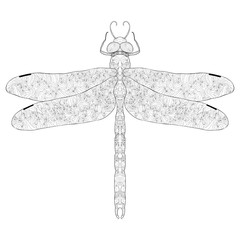 Zentangle stylized dragonfly. Ethnic patterned  illustration. Af