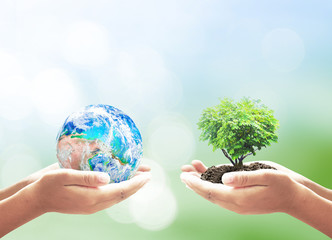 World environment day concept: Two human hands holding earth globe and big tree over blurred nature background. Elements of this image furnished by NASA