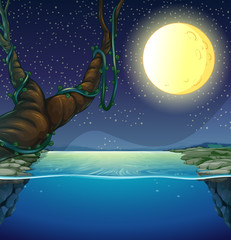 Nature scene with fullmoon and river