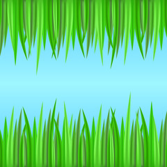 Seamless borders with realistic grass. Vector element for your creativity