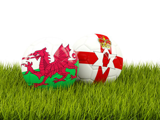 Northernn Ireland and Wales soccer balls on grass