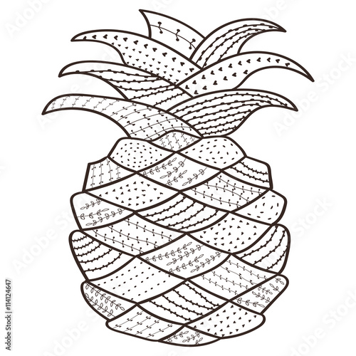 Adult Coloring Book Page Pineapple Whimsical Line Art For