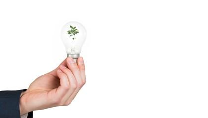 Hand holding environmental light bulb