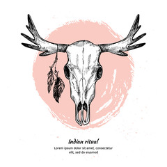 Hand drawn vector illustration - deer skull with feathers.