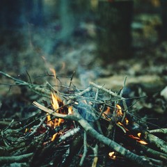 Close up of campfire burning