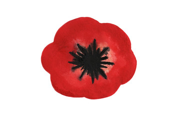Red watercolor Poppy over white background.