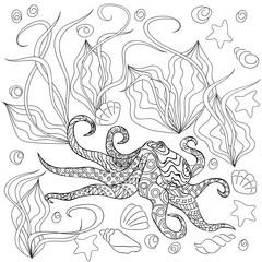 octopus with seashells