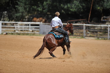A rear view of a rider on horseback sliding in the dust.
