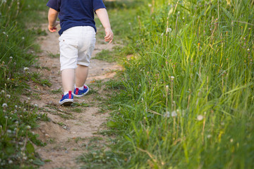 Back view on toddler boy in white shorts running fast and having fun on a countryside road. Little child walking in the park. Active children outdoors.  Lifestyle and childhood concept