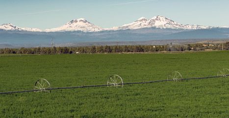 Wall Mural - Three Sisters Stands Majestic Oregon Cascade Mountain Range