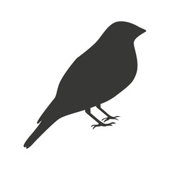 cute bird silhouette  isolated icon design