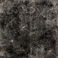 Spider web background - cobweb texture
