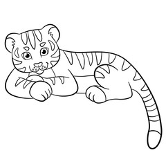 Coloring pages. Wild animals. Little cute baby tiger smiles.