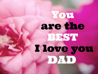 """Inspirational quote """"You are the best I love you dad"""" on blurred flower background with vintage filter"""