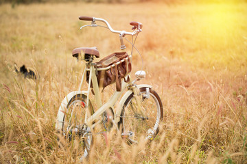 Bicycle in summer grass field. vintage filter