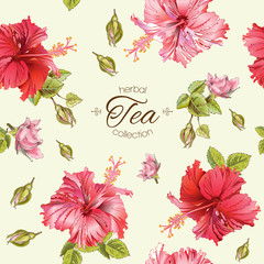 Vector herbal tea seamless pattern with hibiscus flowers.Background design for tea, homeopathy, herbal cosmetics, grocery,health care products. Best for fabric, textile, wrapping paper.