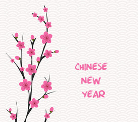 Blossom chinese new year and background