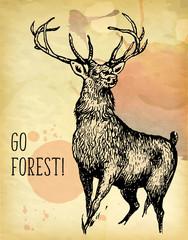 Deer watercolor painting design template vector image
