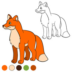 Coloring page. Color me: fox. Little cute fox smiles.