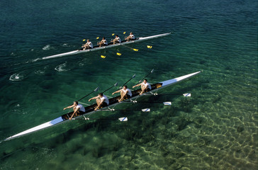 Two teams rowing against each other