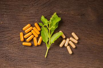 Herbal medicine capsule