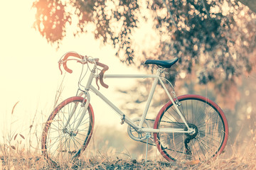Sport Vintage Bicycle with Summer grass field