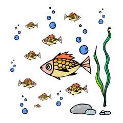 Sea animals-fish